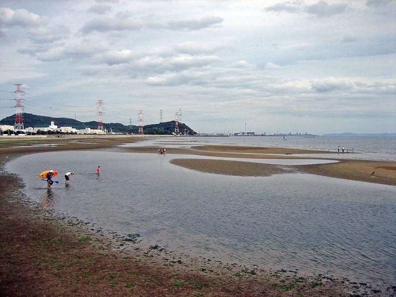 ウインドサーフィン姫路白浜